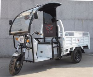 2018 The Latest Design of Southeast Asia Electric Tricycle for Cargo