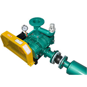 Roots Rotary Vane Vacuum Pump