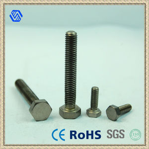 Hexagon Titanium Full Thread Screw DIN933 High Strength Bolt pictures & photos