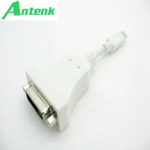 Mini Displayport/M to DVI/F Cable Adapter (white color) 20 Pin pictures & photos