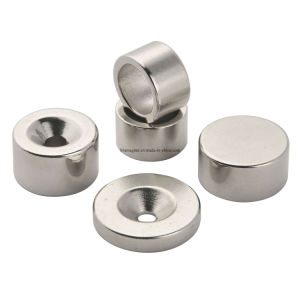 Ring Shape Rare Earth Neoydmium Magnets pictures & photos