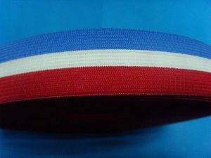 Factory High Quality Stripe Elastic Webbing pictures & photos