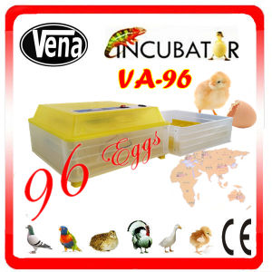 Vena New Design Used Chicken Egg Poultry Incubator pictures & photos