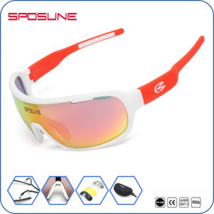 Polycarbonate Lenses Tr Frame Cycling Sunglasses pictures & photos