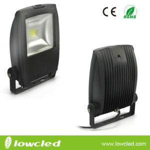 Hot 30W LED Floodlight with Bridgelux Chipset and Mean Well Driver