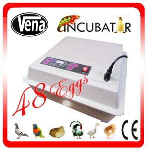 Chicken Egg Incubator for Hatching Va-48 pictures & photos