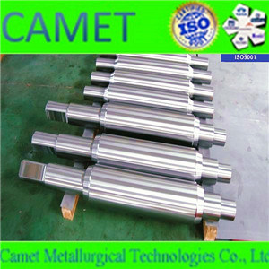 High Quality Forged Steel Roll pictures & photos