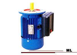 ML Series Single Phase Asynchronous Electrical Motor
