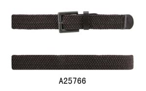 The Fashion Belt for Young Lady (A25766)