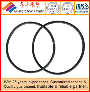 Viton O Ring for Pump Sealing