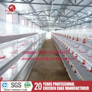One Day Old Chick Cages for Baby Poultry Farm pictures & photos