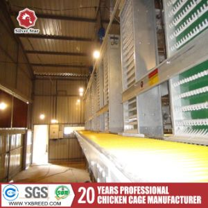 Chicken Battery Cages From China Factory pictures & photos