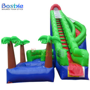 Used Swimming Pool Slide Inflatable Adult Water Slides