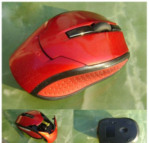 Wireless Optical Mouse (QY-WM2439) pictures & photos
