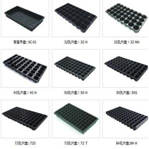 Seed Tray Seeding Tray Cell Trays Plug Tray Planter Trays Flower Trays pictures & photos