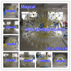 High Quality Transparent Grass Hamster Ball pictures & photos