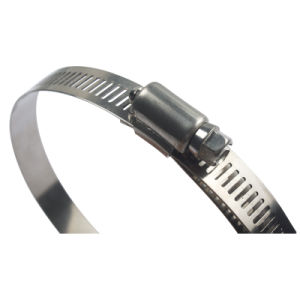 American Type Hose Clamp (TY001) pictures & photos
