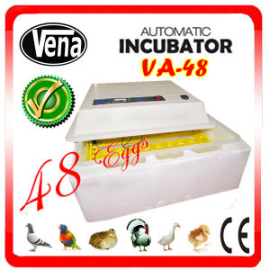 Fully Automatic Quail Egg Incubator for 132 Eggs pictures & photos