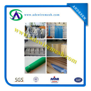 80gram-140gram Alkali Resistant Fiberglass Mesh (hot sale & factory price) pictures & photos