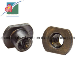 Stainless Steel T Type Nut (ZH-FB-011)