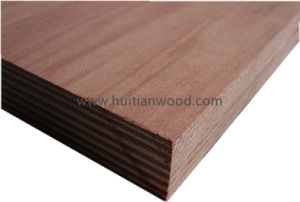 Bintangor Face Commercial Plywood