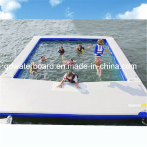 High Quality with Low Price Swimming Pool with Net