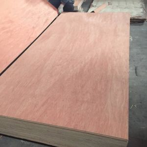 18mm Bintangor Face E2 Glue Combi Core Plywood pictures & photos