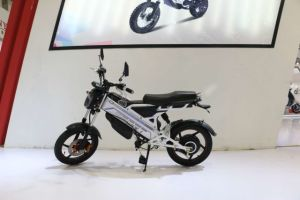 New Model Electric Scooter Bike with Pedals pictures & photos