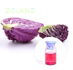Red Cabbage Red Colorant Powder