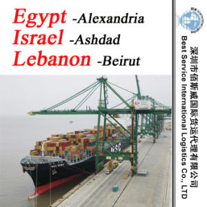 "Ocean Container Shipment Alexandria (Egypt) ; Ashdad (Israel) ; Beirut (Lebanon) -20""/40"" pictures & photos"