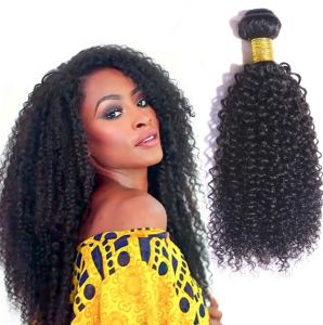 Natural Black Afro Kinky Curly Hair Bundle Brazilian Human Hair Weft for Black Lady