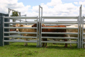 Cattle Control Hurdle Farm Customized CNC Sheet Metal Fabrication