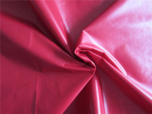 20d Nylon Taffeta Fabric for Down Coat (XSN007) pictures & photos