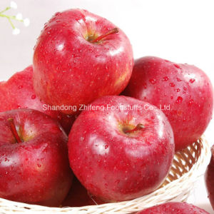 Chinese High Quality Red Star Apple pictures & photos