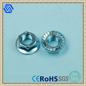 Carbon Steel Hexagon Flange Nut with Tooth pictures & photos