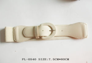 Fashion Elastic Belt Fl-0540