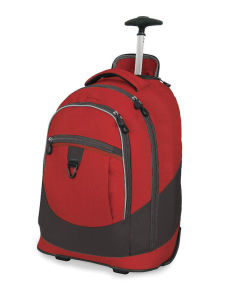 Youth Guy Luggage Bag (SKTB-0021) pictures & photos