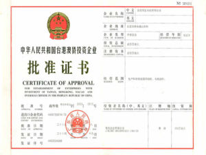 Chinese Company Registration (W. F. O. E)