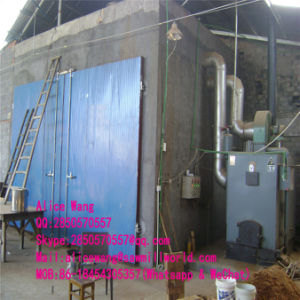 Chinese New Style Wood Dryer Kiln Machine for Sale