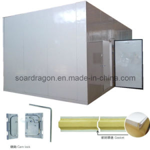 Polyurethane Freezer Room for Meat Storage with Fire Resistance (DC) pictures & photos