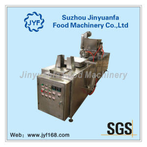 Depositing Machine-China Professional Chocolate Machine pictures & photos