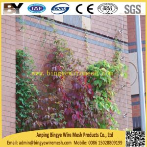 Stainless Steel Webnet Rope Cable Flexible X Tend Landscape Greening Living Green Plant Climbing Support