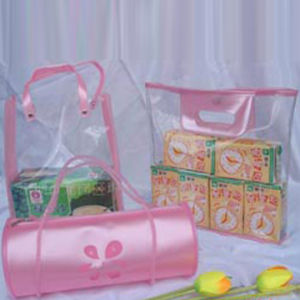 2010 Fashion Packaging PVC Bag for Food