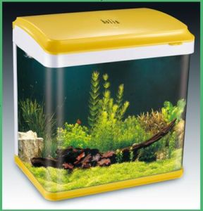 Desktop Glass Aquarium Fish Farm Tank for Sale with Inner Filter, LED (HL-ATD85) pictures & photos