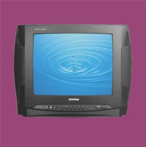 Digital Colour TV (ZD-14C)