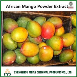 China Hot Sale African Mango Plant Extract Mangiferin For Weight