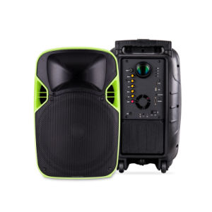 12 Inches Portable Consumer Projection Loud Speaker with Battery