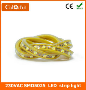 High Quality AC230V SMD5025 Two Color LED Strip pictures & photos