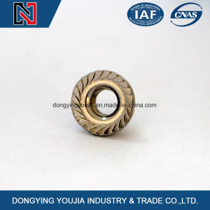 Flange Hexagon Nuts pictures & photos