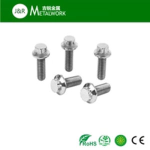 A2 A4 Stainless Steel 12 Point Flange Bolt (SS304 SS316 316L) pictures & photos